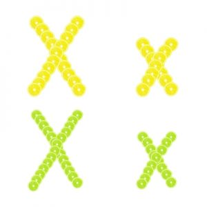 Xs made from lemons and limes